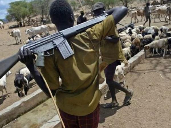 Armed Fulani Herdsmen Are Terrorists- HURIWA Restates: