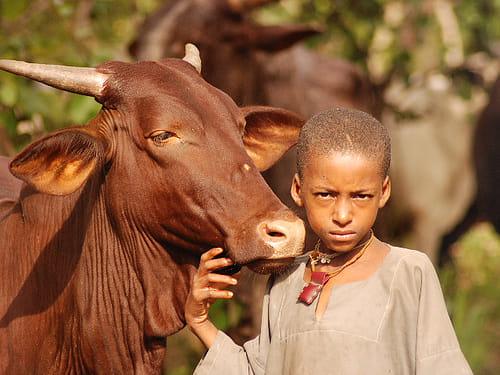 Stop Giving Fulani A Bad Name